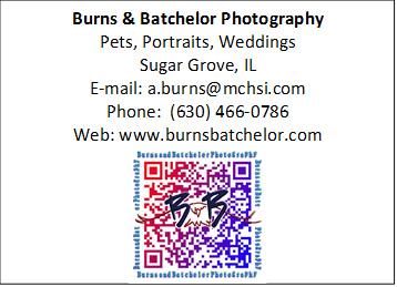 Burns & Batchelor Photography Pets, Portraits, Weddings Sugar Grove, IL E-mail: a.burns@mchsi.com Phone:  (630) 466-0786 Web: www.burnsbatchelor.com